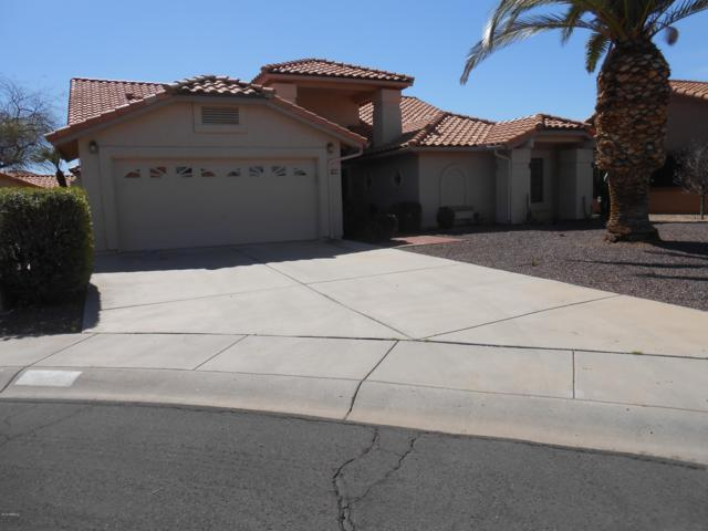 9105 W Oraibi Drive, Peoria, AZ 85382 (MLS #5894532) :: The Everest Team at My Home Group