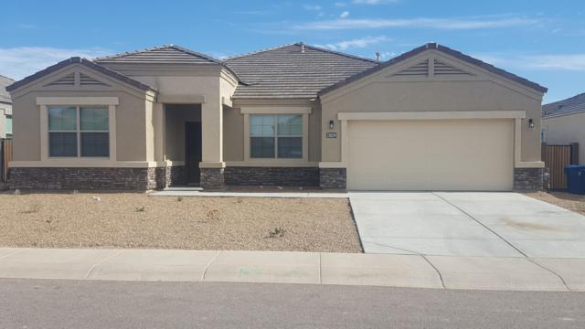 30147 W Fairmount Avenue, Buckeye, AZ 85396 (MLS #5894534) :: Santizo Realty Group