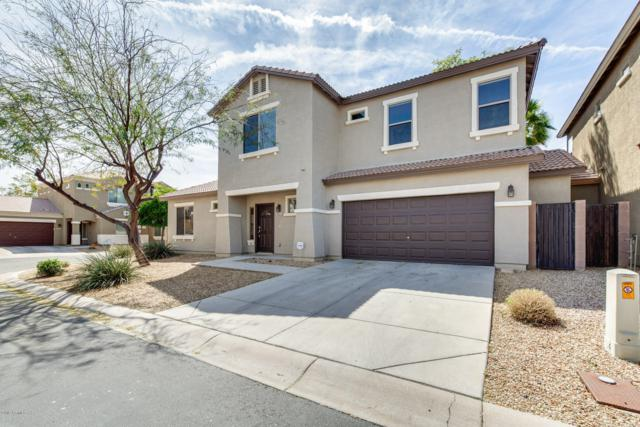 15842 N 73RD Lane, Peoria, AZ 85382 (MLS #5894585) :: The Laughton Team