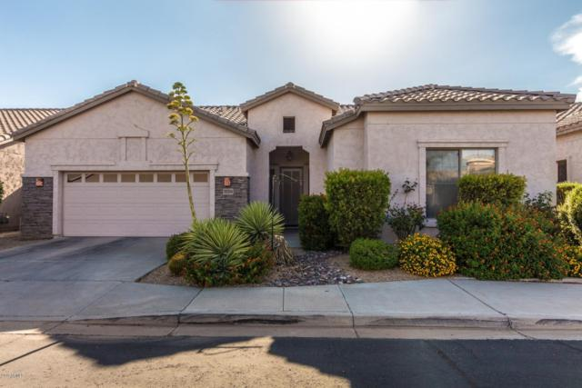 18214 N 48th Place, Scottsdale, AZ 85254 (MLS #5894629) :: Yost Realty Group at RE/MAX Casa Grande