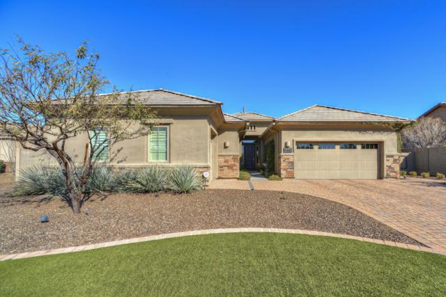 5616 E Little Wells Pass W, Cave Creek, AZ 85331 (MLS #5894675) :: The Laughton Team