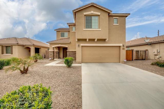 35340 N Murray Grey Drive, San Tan Valley, AZ 85143 (MLS #5894727) :: Yost Realty Group at RE/MAX Casa Grande