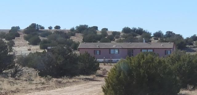 5798 Pumkin Patch Road, Overgaard, AZ 85933 (MLS #5894802) :: Phoenix Property Group