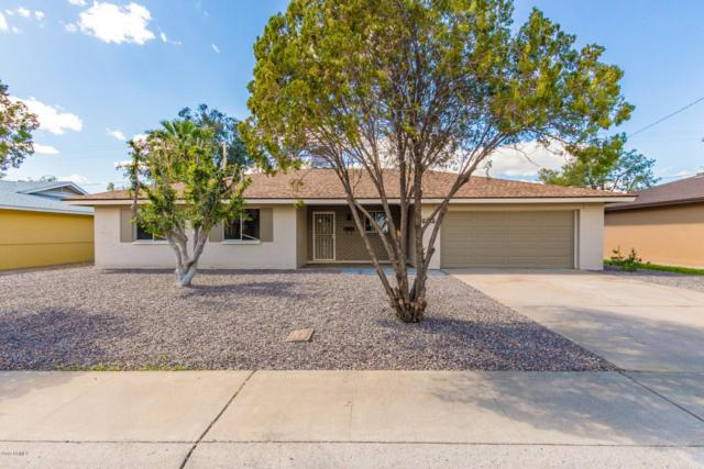 8838 N 42ND Avenue, Phoenix, AZ 85051 (MLS #5894834) :: Yost Realty Group at RE/MAX Casa Grande