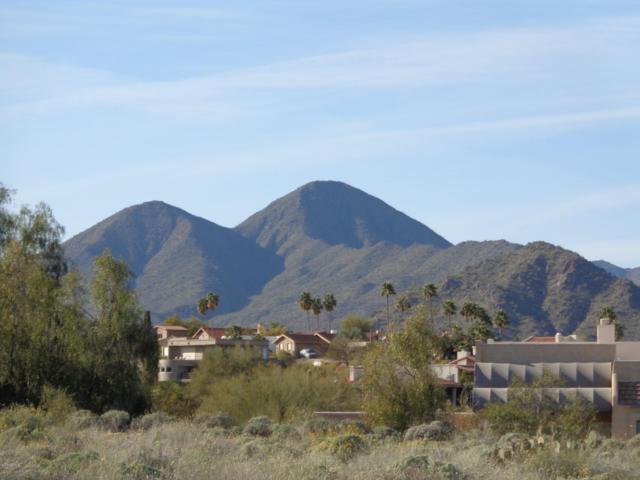 11044 N Indigo Drive, Fountain Hills, AZ 85268 (MLS #5894844) :: Yost Realty Group at RE/MAX Casa Grande