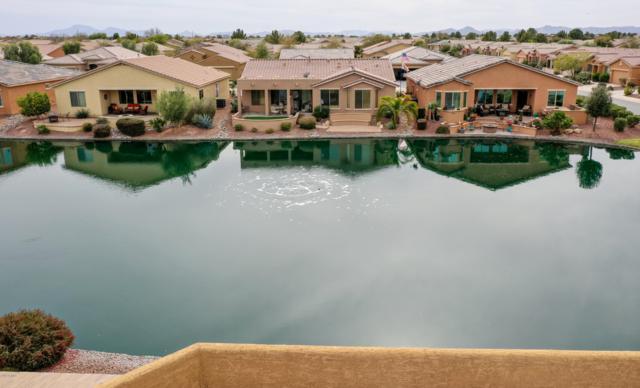20282 N Oxbow Lane, Maricopa, AZ 85138 (MLS #5894868) :: Yost Realty Group at RE/MAX Casa Grande