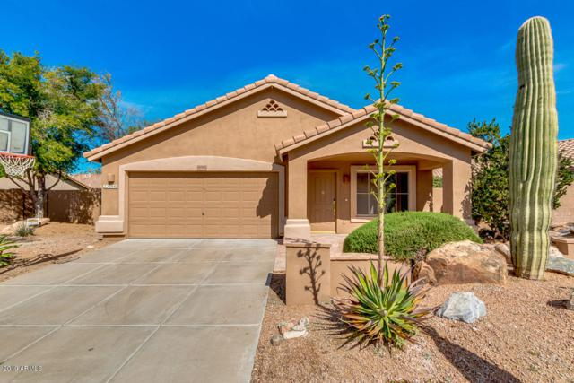10346 E Texas Sage Lane, Scottsdale, AZ 85255 (MLS #5894936) :: Yost Realty Group at RE/MAX Casa Grande