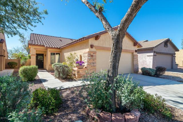 10805 E Surveyor Court, Gold Canyon, AZ 85118 (MLS #5894948) :: CC & Co. Real Estate Team