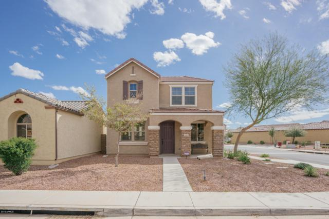 8999 W Northview Avenue, Glendale, AZ 85305 (MLS #5894954) :: Yost Realty Group at RE/MAX Casa Grande