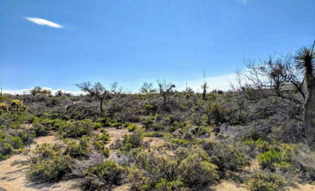 40231 N 107TH Place, Scottsdale, AZ 85262 (MLS #5895140) :: The W Group