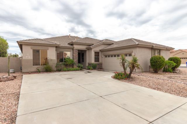 6887 S Teresa Drive, Chandler, AZ 85249 (MLS #5895175) :: Yost Realty Group at RE/MAX Casa Grande