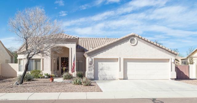10894 S Turtle Dove Drive, Goodyear, AZ 85338 (MLS #5895196) :: Yost Realty Group at RE/MAX Casa Grande