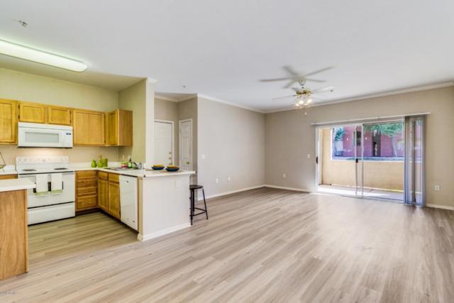 5401 E Van Buren Street #1053, Phoenix, AZ 85008 (MLS #5895208) :: The Wehner Group