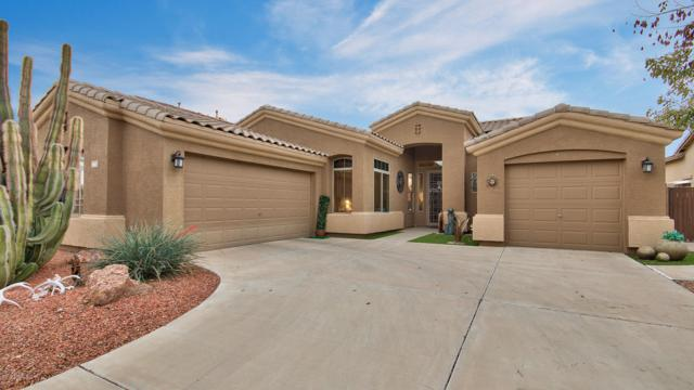 4667 E County Down Drive, Chandler, AZ 85249 (MLS #5895237) :: Devor Real Estate Associates
