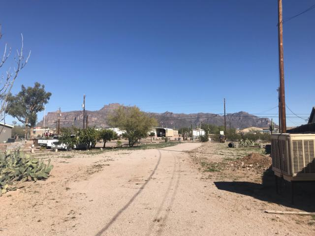 1256 S Starr Road, Apache Junction, AZ 85119 (MLS #5895238) :: Yost Realty Group at RE/MAX Casa Grande
