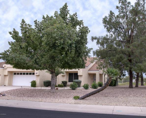 13628 W Greenview Drive, Sun City West, AZ 85375 (MLS #5895248) :: Yost Realty Group at RE/MAX Casa Grande