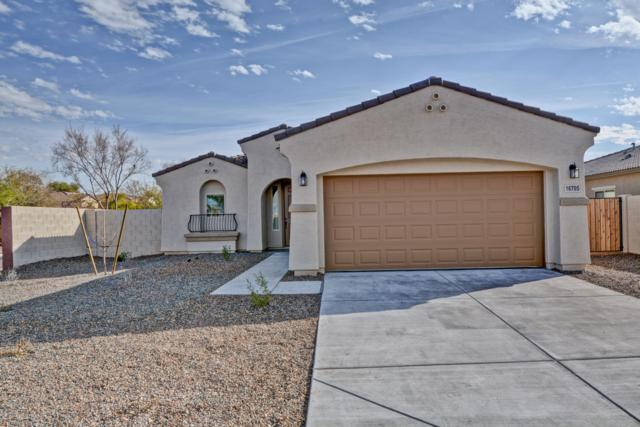 16705 W Tether Trail, Surprise, AZ 85387 (MLS #5895253) :: Yost Realty Group at RE/MAX Casa Grande