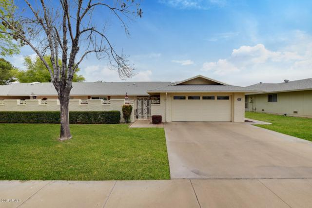 19038 N Concho Circle, Sun City, AZ 85373 (MLS #5895296) :: Yost Realty Group at RE/MAX Casa Grande