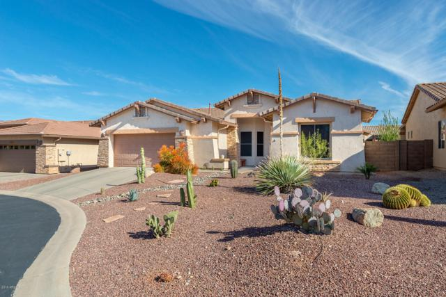 8241 S Rocky Peak Court, Gold Canyon, AZ 85118 (MLS #5895300) :: Yost Realty Group at RE/MAX Casa Grande