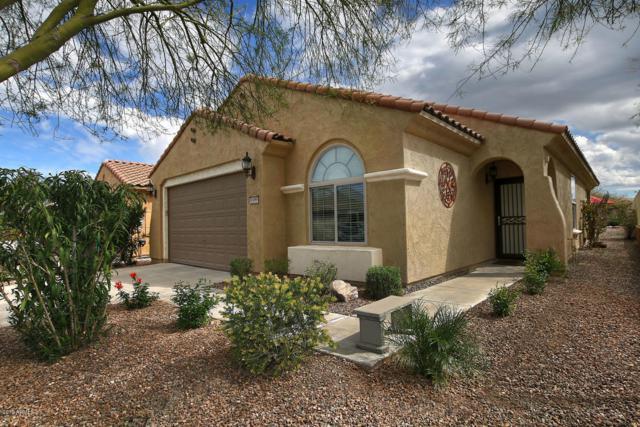 6599 W Saratoga Way, Florence, AZ 85132 (MLS #5895307) :: Keller Williams Realty Phoenix
