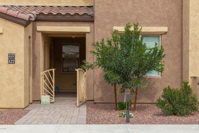 250 W Queen Creek Road #127, Chandler, AZ 85248 (MLS #5895365) :: The Kenny Klaus Team