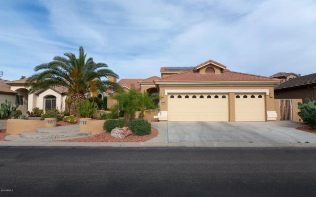 2585 N 162ND Lane, Goodyear, AZ 85395 (MLS #5895434) :: Yost Realty Group at RE/MAX Casa Grande