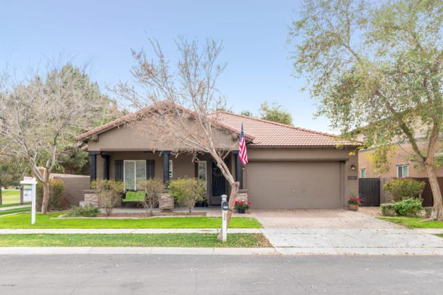 3579 E Marlene Drive, Gilbert, AZ 85296 (MLS #5895450) :: Revelation Real Estate