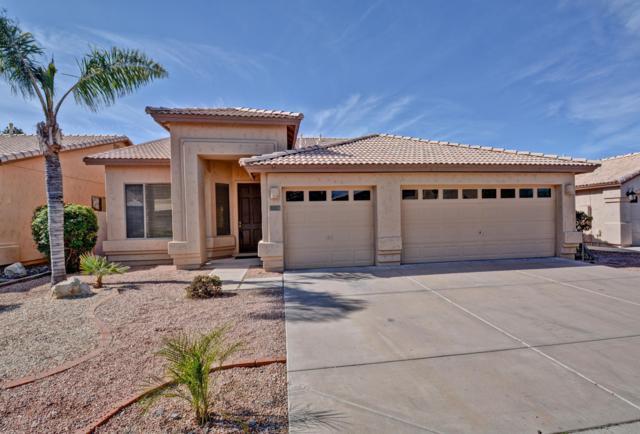 323 W Muriel Drive, Phoenix, AZ 85023 (MLS #5895464) :: Yost Realty Group at RE/MAX Casa Grande