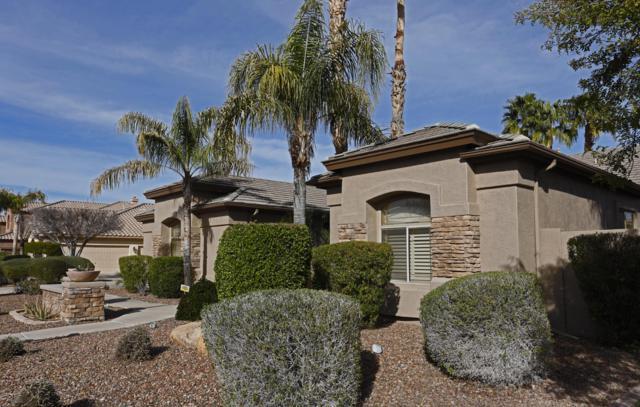 1641 S Carriage Lane, Chandler, AZ 85286 (MLS #5895499) :: Santizo Realty Group