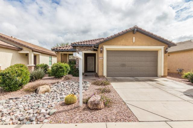 6355 W Heritage Way, Florence, AZ 85132 (MLS #5895514) :: The Jesse Herfel Real Estate Group