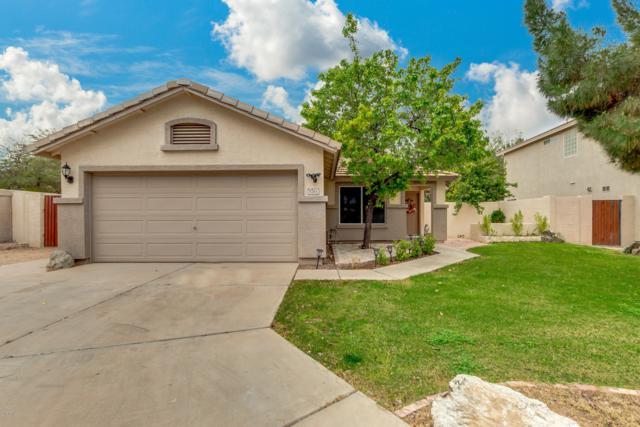 5761 E Grove Circle, Mesa, AZ 85206 (MLS #5895552) :: Yost Realty Group at RE/MAX Casa Grande