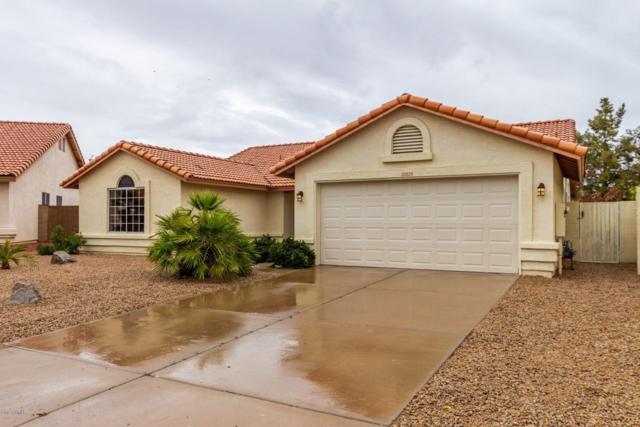 20825 N 110TH Avenue, Sun City, AZ 85373 (MLS #5895564) :: Yost Realty Group at RE/MAX Casa Grande