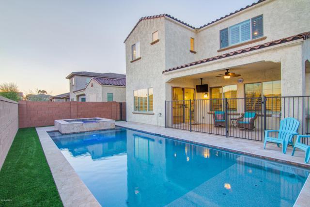 223 W Kings Avenue, Phoenix, AZ 85023 (MLS #5895570) :: CC & Co. Real Estate Team