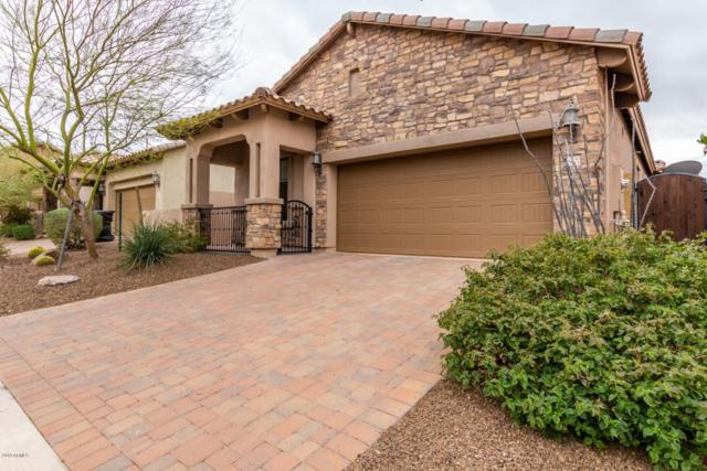 8627 E Indigo Street, Mesa, AZ 85207 (MLS #5895589) :: CC & Co. Real Estate Team