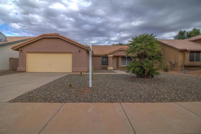 4330 W Camino Vivaz, Glendale, AZ 85310 (MLS #5895590) :: Occasio Realty