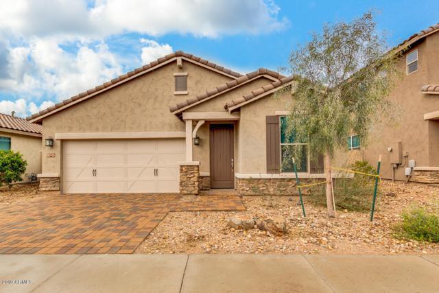 3015 W Thorn Tree Drive, Phoenix, AZ 85085 (MLS #5895610) :: CC & Co. Real Estate Team