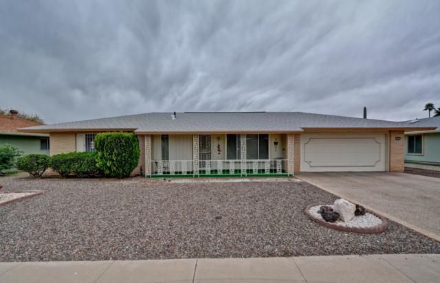 10307 W Sutters Gold Lane, Sun City, AZ 85351 (MLS #5895616) :: CC & Co. Real Estate Team
