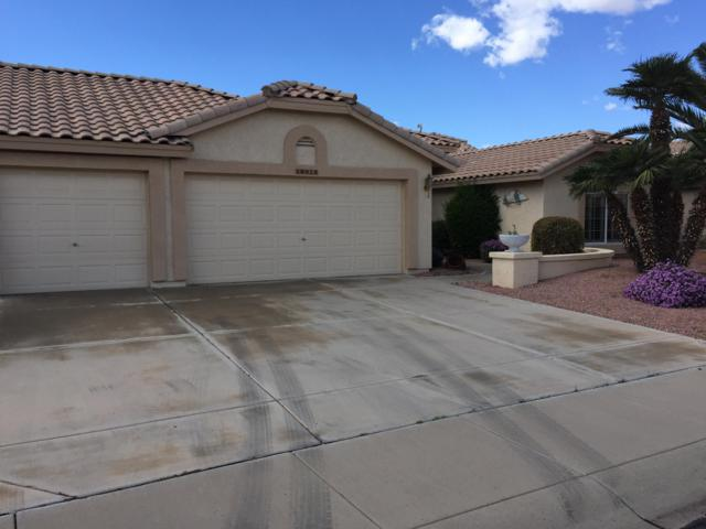 18912 N 87TH Lane, Peoria, AZ 85382 (MLS #5895619) :: Riddle Realty
