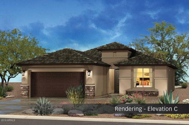 4385 W Box Canyon Drive, Eloy, AZ 85131 (MLS #5895685) :: The Laughton Team