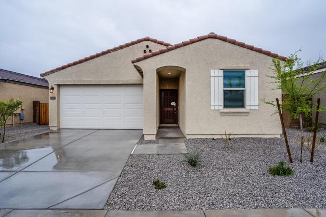 23703 W Whyman Street, Buckeye, AZ 85326 (MLS #5895697) :: CC & Co. Real Estate Team