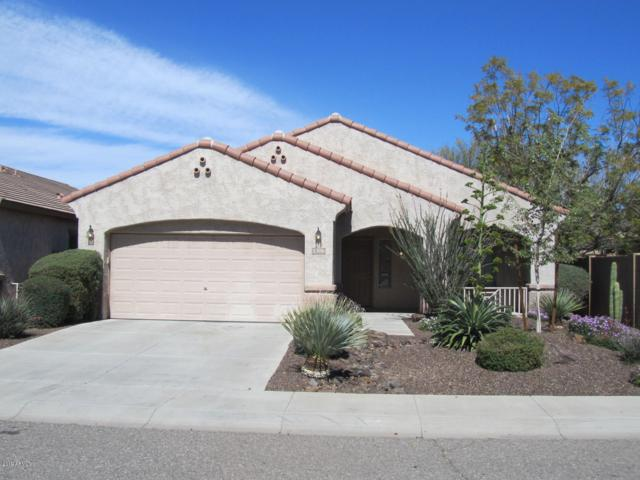 5306 W Saddlehorn Road, Phoenix, AZ 85083 (MLS #5895721) :: REMAX Professionals