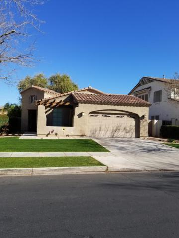 4226 E Lexington Avenue, Gilbert, AZ 85234 (MLS #5895728) :: Yost Realty Group at RE/MAX Casa Grande