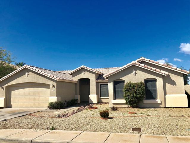 7694 N 54TH Lane, Glendale, AZ 85301 (MLS #5895734) :: Team Wilson Real Estate
