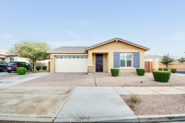 22331 E Via De Olivos, Queen Creek, AZ 85142 (MLS #5895751) :: Yost Realty Group at RE/MAX Casa Grande