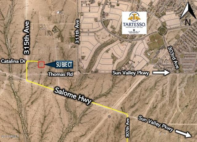 31355 W Catalina Drive, Buckeye, AZ 85396 (MLS #5895782) :: Yost Realty Group at RE/MAX Casa Grande