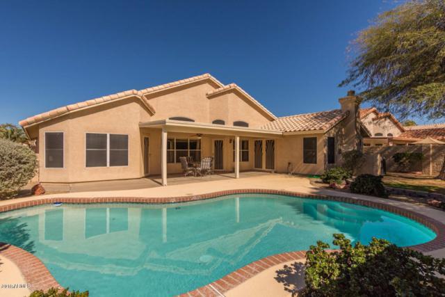 7867 W Oraibi Drive, Glendale, AZ 85308 (MLS #5895869) :: The Carin Nguyen Team