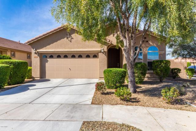 1918 S 170th Avenue, Goodyear, AZ 85338 (MLS #5895877) :: Riddle Realty
