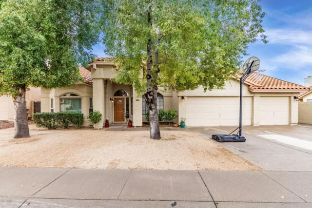 3605 N 109TH Avenue, Avondale, AZ 85392 (MLS #5895879) :: CC & Co. Real Estate Team