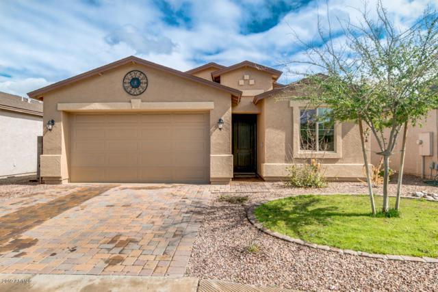 30643 N Desert Star Drive, San Tan Valley, AZ 85143 (MLS #5895905) :: The Laughton Team