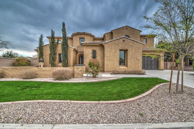 20297 E Poco Calle, Queen Creek, AZ 85142 (MLS #5895907) :: Revelation Real Estate